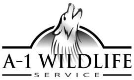 A-1 Wildlife Service